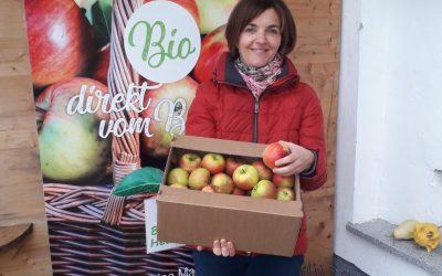Ein Lichtblick für alle Apfelallergiker/innen